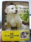 「犬と私の10の約束」