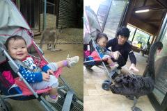 埼玉県こども動物自然公園。