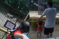 池田動物園。